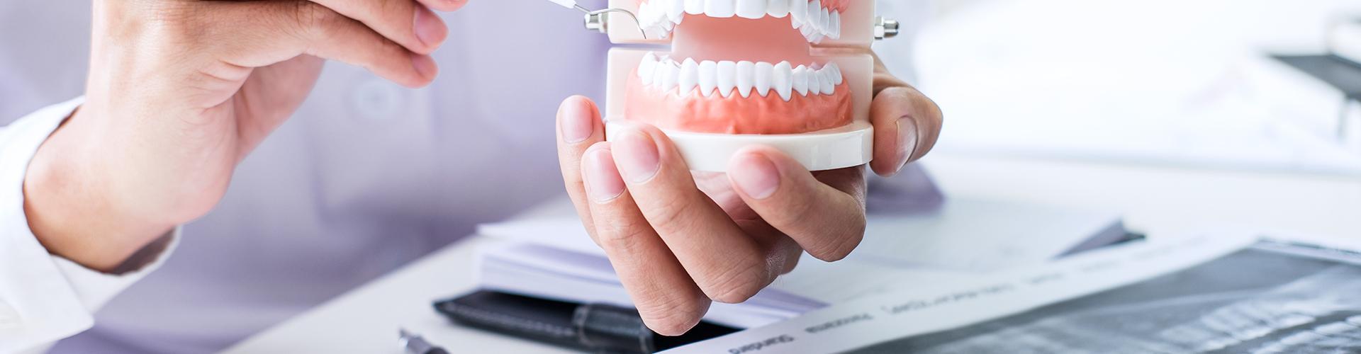 Dr. Turopoli Katalin